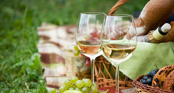 outdoor events and picnics for seniors